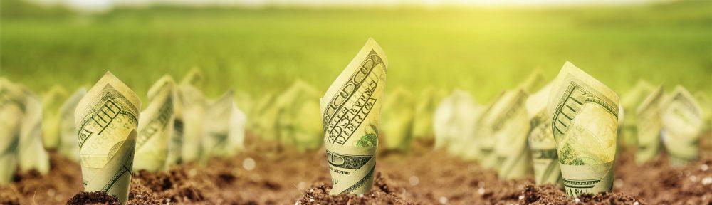 Farma novca